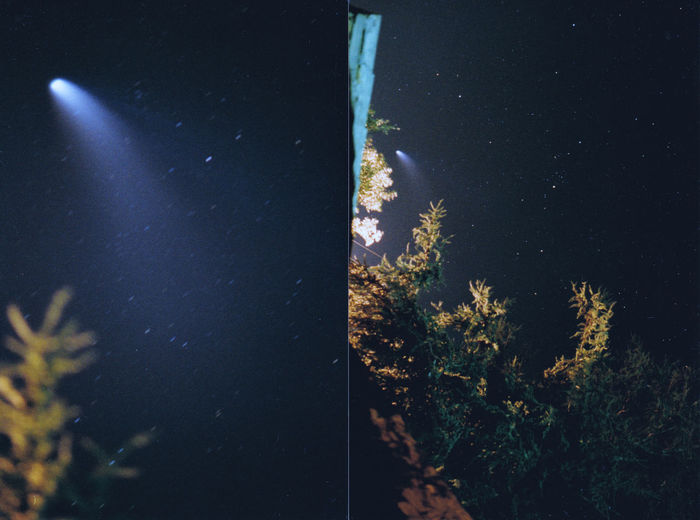Cometa Hale-Bopp estate 1997 35mm Film Astronomy Beauty In Nature Blue Color Film Comet Dark Galaxy Growth Hale Bopp Illuminated Low Angle View Nature Night No People Outdoors Scenics Sky Star Star - Space Star Field Tranquil Scene Tranquility Tree