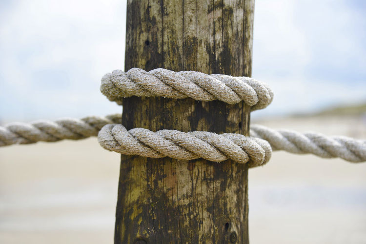 A rope as Symbol for strenght, stay together and safety Rope Close-up Focus On Foreground Post Strength Wooden Post Wood - Material No People Day Tied Up Outdoors Nature Connection Pole Twisted Tied Knot Land Water Symbol Stay Together Strenght Safety Narrative Friends Leadership