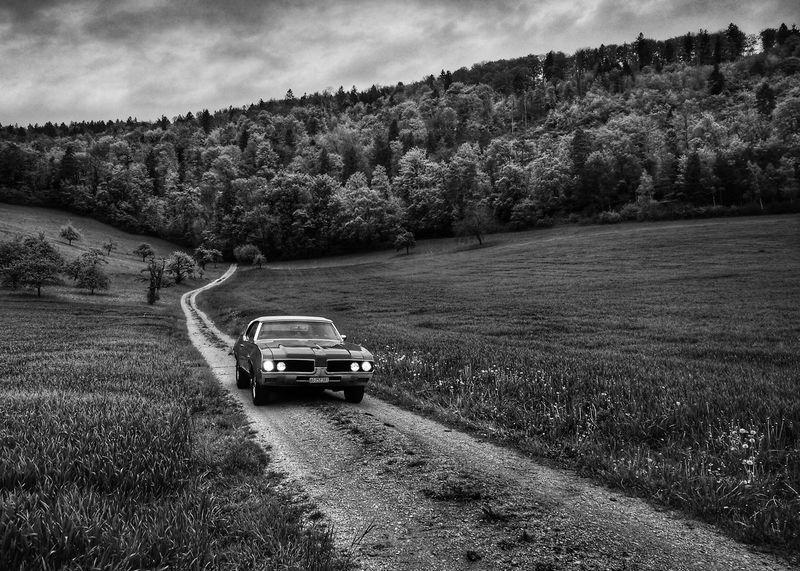 Landscape Agriculture Oldsmobile Cutlass Switzerland Cars First Eyeem Photo