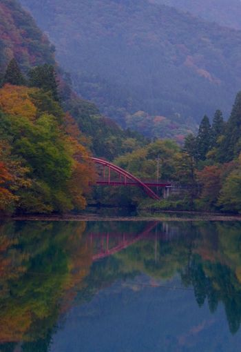 Pentax K-3 秋 Autumn Reflection 紅葉
