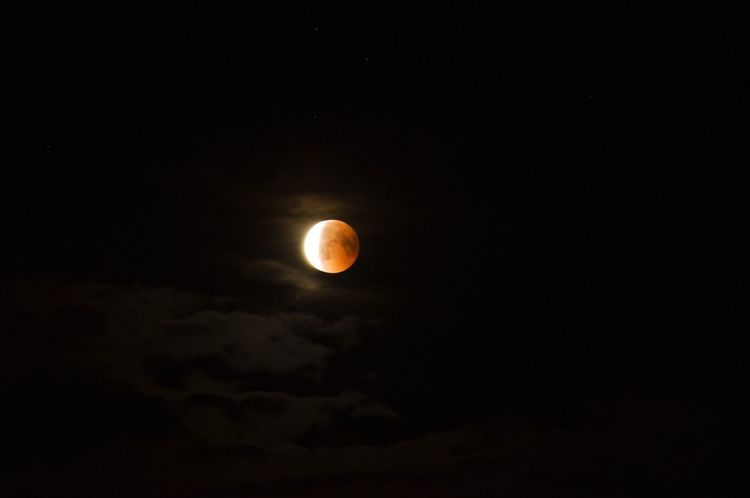 Blutmond Mondfinsternis Moon Mondfinsternis Bloodmoon Bloodmoon Night Sky Space Moon Astronomy Beauty In Nature Scenics - Nature Planetary Moon Full Moon Space And Astronomy Science Nature Dark No People