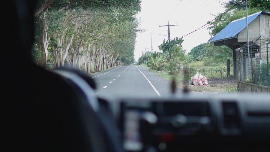 Rear view of man seen through car windshield