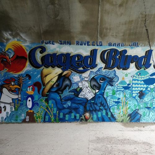 Birds Multi Colored Street Art Text Graffiti Close-up Architecture Spray Paint Mural