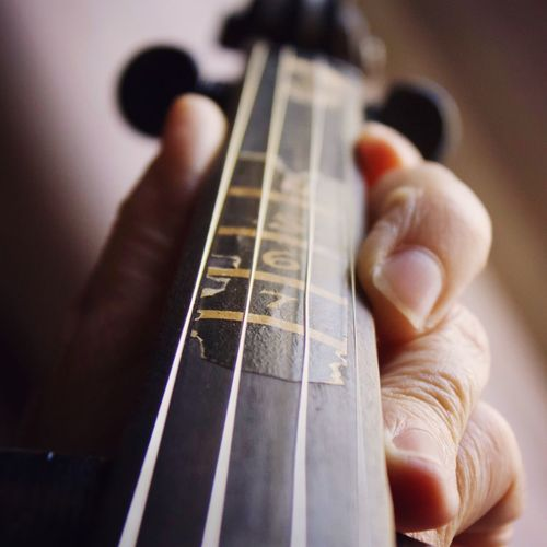 Cropped image of man playing string instrument