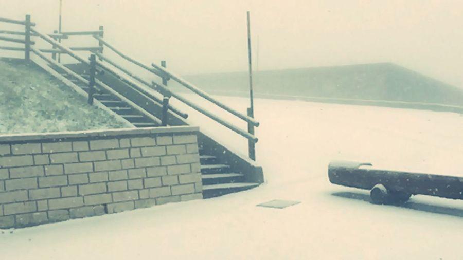 Nevicata Continua Magnifico Paesaggiostupendo Mattinatabianca