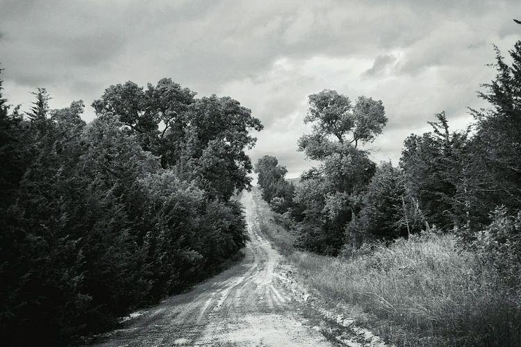 Dirt Road Hillcountry Back Roads Monochrome Rural Scenes Rural Exploration Photography Rural Landscape Polarizing Filter Fuji X-T1