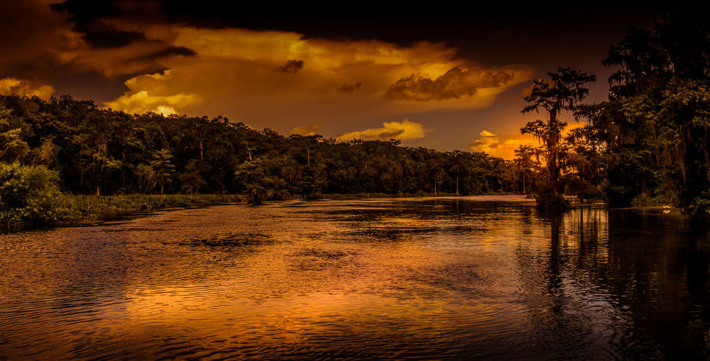 Journey into the Heart of Darkness Atmospheric Mood Beauty In Nature Dramatic Sky Florida Idyllic Nature Nature No People Orange Color Outdoors Remote River Scenics Sunset Swamp Tranquil Scene Wakulla River Wakulla State Park Water Wetlands The Great Outdoors - 2017 EyeEm Awards