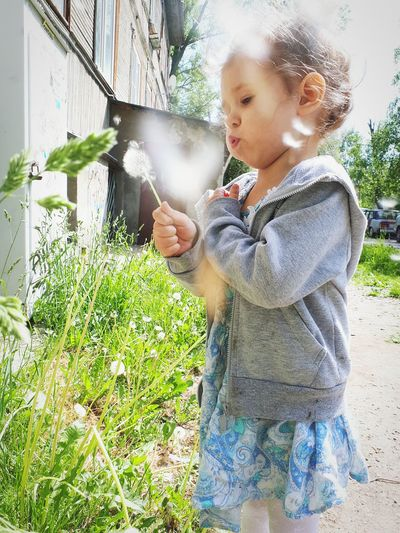 Cute girl blowing dandelion while standing on footpath