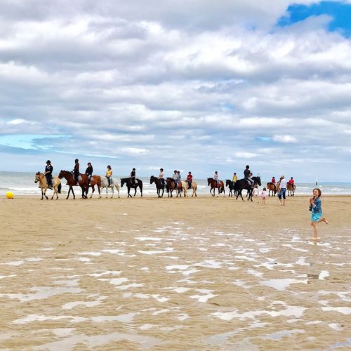 Horses on the beach Large Group Of People Beach Sky Cloud - Sky Sand Sea Nature Men Real People Vacations Girl Water Horse Racing Leisure Activity Lifestyles Sport Women Day Adventure Sports Race