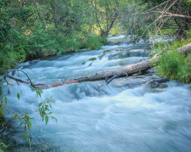 Rushing Water Flowing Water Hat Creek T3i Photo taken at Lassen National Park in Northern California by Kyle Nelson follow4follow