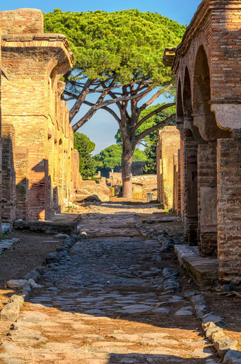 Roman Empire ruins, Ostia Antica, Rome. Ancient Antique Empire Remains Rome Ruins Tree Aged Ancient Antica Architecture Background Built Structure Civilization Day History Italian Italy No People Old Old Ruin Ostia Outdoors Roman Street
