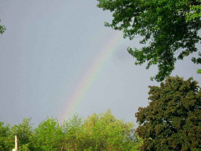 Gases in the sky Rainbow