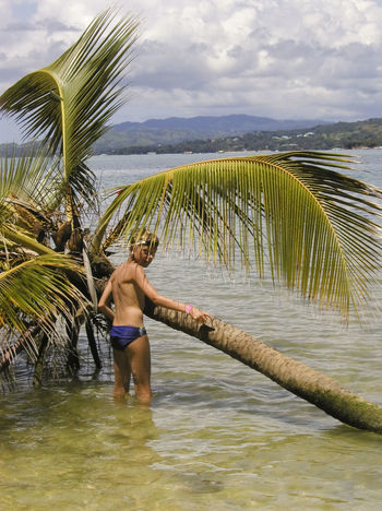boy with a fallen palm tree - on the beach of tobago Adventure Beach Beach Life Beach Photography Beachphotography Boy Caribbean Caribbean Sea Child Childhood Exploring Fallen Tree Kid One Boy Only Palm Tree Palm Tree Sea Shirtless Tobago Tropical Tropical Climate Trunks Vacations Water Wet Miles Away