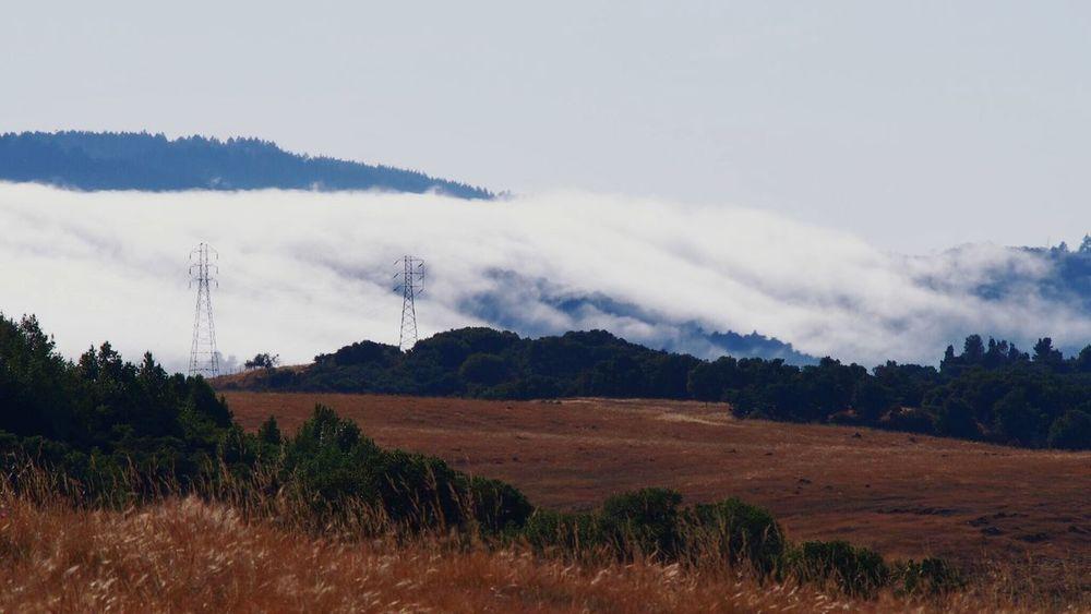 Emeraldhill California Field Sky Clouds And Sky Cloud Clouds White Clouds