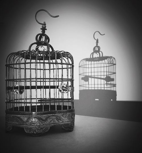 Birdcage with its shadow Bird Birdcage Birdcages Black And White Black And White Collection  Black And White Photography Cages Decor Shadow Shadow And Light Still Life Still Life Photography