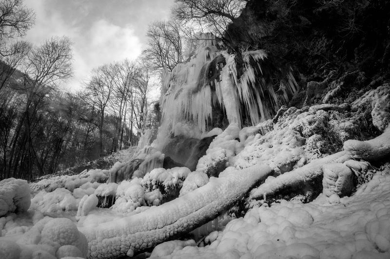 Frozen Waterfall Urmomente Badurach Schwarzweiß Blackandwhite Fisheye SonyAlpha58 Gefrorener Wasserfall Wasserfall Frozen Waterfall Frozenwaterfall Ice Tree Cold Temperature Nature No People Outdoors Day Winter Sky Beauty In Nature Snow