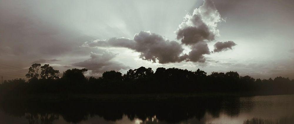 Florida sky Shadows & Lights Nature Photography Riverscape Shadow-art Shadows And Backlighting