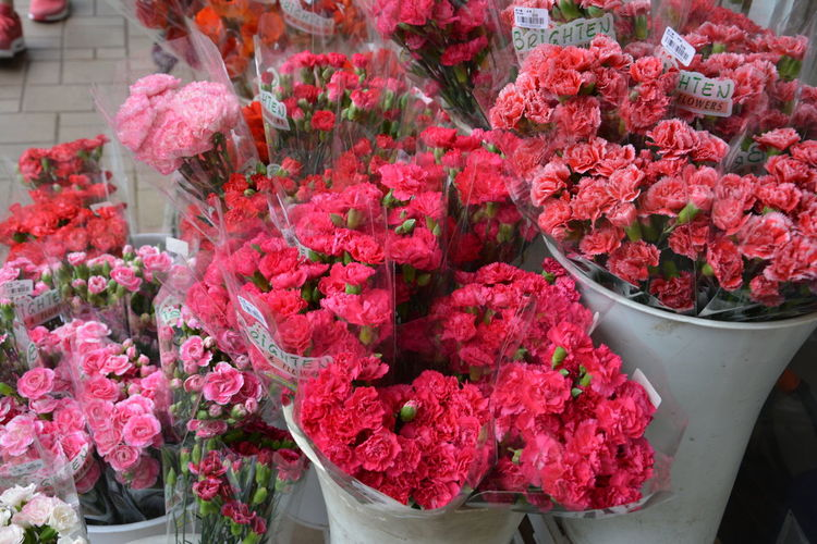 Bright Colorful Colors Flower Flower Market Flower Market Hong Kong Flower Market Mong Kok Flowers Hong Kong HongKong Lonely Planet Market Nature Red Travel Travel Destinations Yellow
