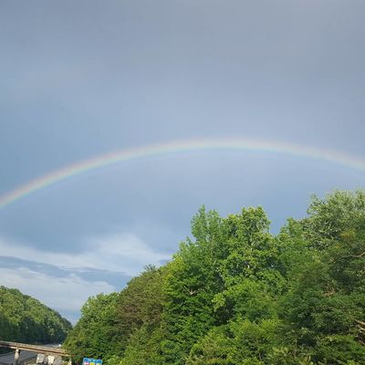 Somewhere over the rainbow Rainbow No People Double Rainbow Tree Sky Curve Day Multi Colored Outdoors Nature Spectrum Beauty In Nature North Carolina Day Tripping Summer Love Where You Live