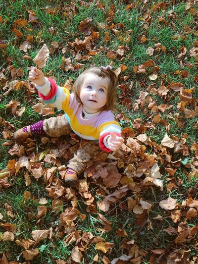 High angle view of girl with dry leaves on field