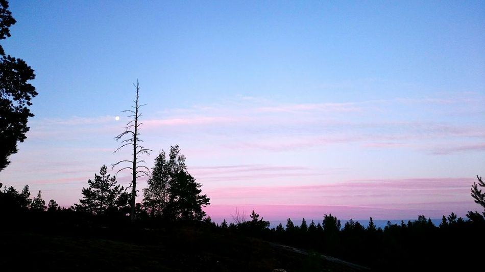 It's one of those dumb days where nothing's really wrong but nothing's really right eather and the sky can't even choose to be white or gray. Landscape Sky Sunrise Summer Sky And Clouds Sky_collection Nature Purple Sky Morning