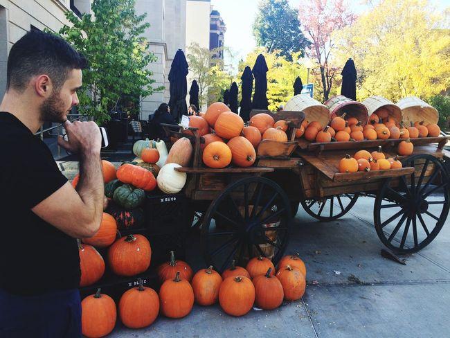 Keep staring Pumpkin Season Autumn In Montreal