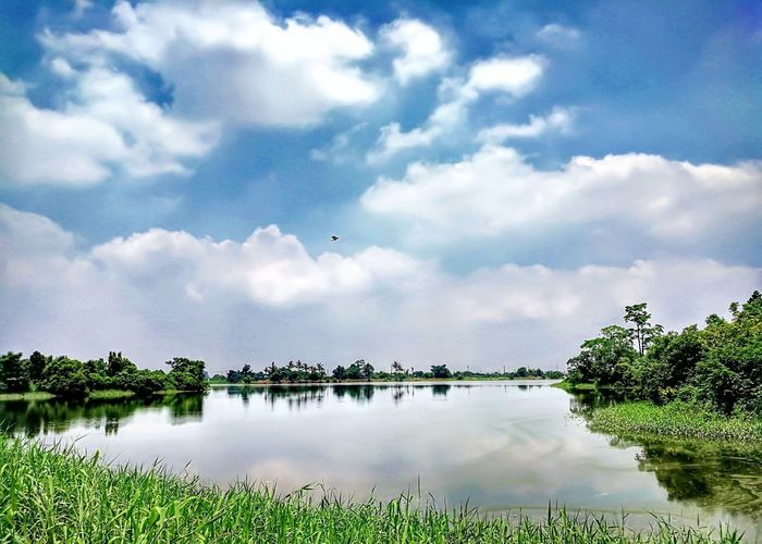 Tree Cloud - Sky Landscape Water Reflection Lake Nature Tranquility Day Outdoors Scenics Social Issues Sky Multi Colored Beauty In Nature No People Bird Grass Mountain