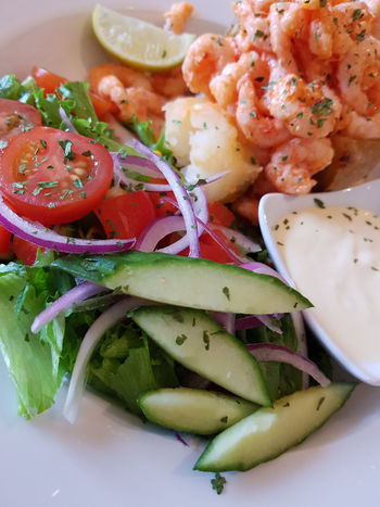 Honningsvag Norway Arctic Circle Close-up Food Food And Drink Freshness Fruit Healthy Eating Indoors  Indulgence Meal No People North Cape Onion Plate Ready-to-eat Salad Seafood Serving Size Still Life Temptation Tomato Vegetable Wellbeing
