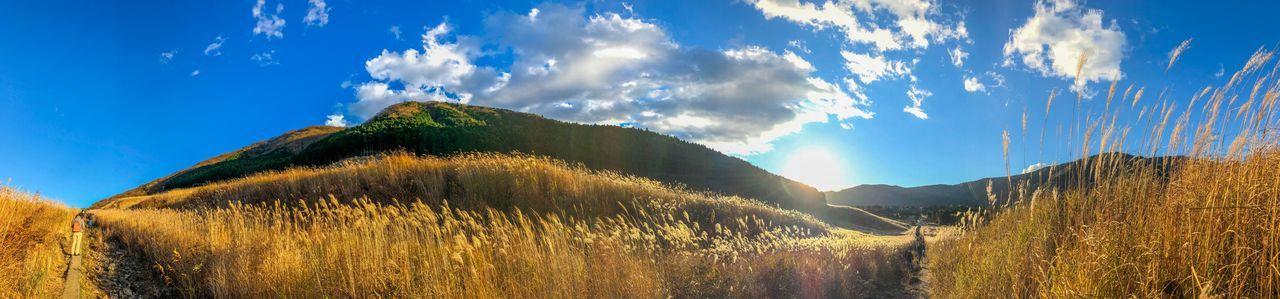 また来たいなぁ。 Sunset Silhouettes Sunset EyeEm Nature Lover Nature Sky Tranquility Tranquil Scene Mountain Growth Day Tree Sunlight Outdoors No People Landscape Panoramic Beauty In Nature Scenics Field Cloud - Sky Blue Plant Grass