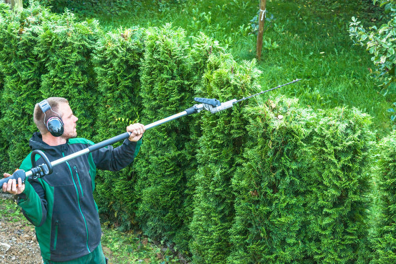 Man cutting plants with electric trimmer