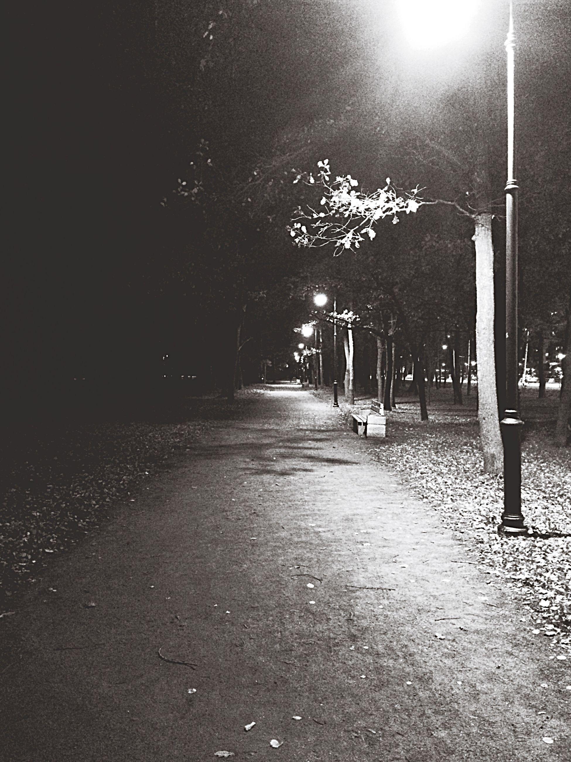 street light, night, illuminated, road, lighting equipment, street, the way forward, tree, electric light, dark, tranquil scene, diminishing perspective, outdoors, lit, tranquility, scenics, vanishing point, solitude, empty road, footpath