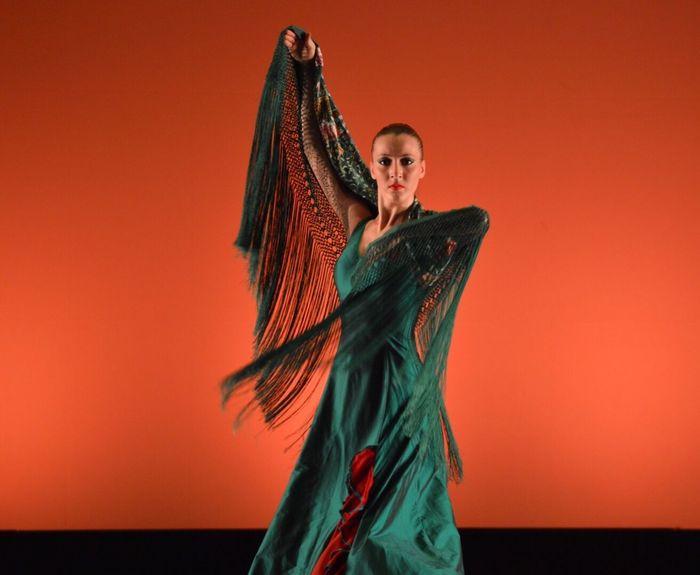 Ballerina Flamengo Colori Teatro Verde Ballo Dance Flamenco