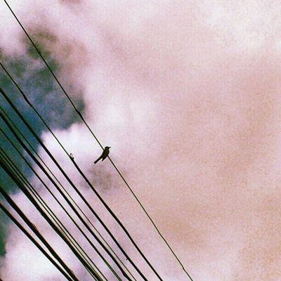 O equilibrista e as nuvens