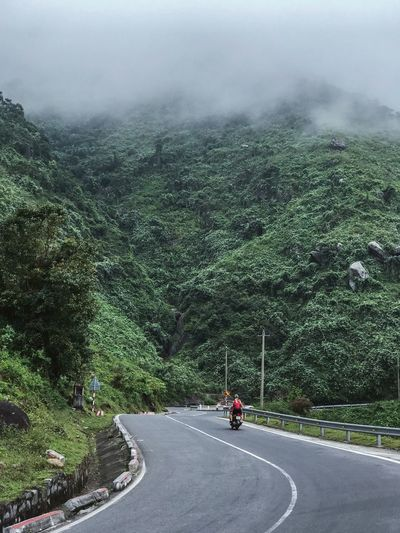 Trip Roadtrip Beauty In Nature Passenger Couple Slope Foggy Vietnamese Nature Hai Van Pass Mountain Driving Transportation Road Mode Of Transportation Tree Plant Nature Day Land Vehicle Sign Direction Real People The Way Forward Green Color Motorcycle Outdoors Growth Travel Motor Vehicle Riding
