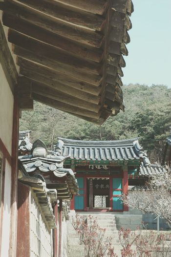 도산서원 안동 Andong South Korea Korean Traditional Architecture Historical Place Spring Traveling Travel Photography