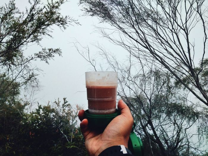 Milo Panas ☕ Milo Human Hand Drink Human Body Part One Person Holding Tree Beer - Alcohol Food And Drink Refreshment Beer Glass Drinking Glass Day Frothy Drink Outdoors Adult Alcohol People Adults Only Real People One Man Only Gunungpulut Perak Darul Ridzuan, Malaysia