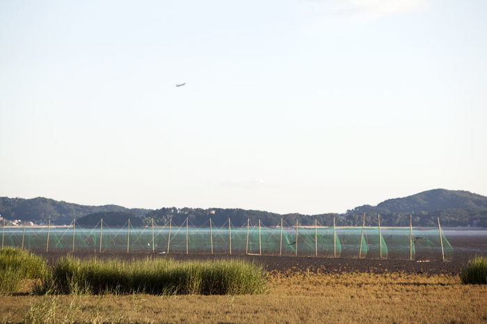 Airplane Beauty In Nature Boundary Clear Sky Copy Space Countryside Day Fence Flying Ganghwado Island Mountain Mountain Range Nature Net No People Non-urban Scene Outdoors Remote Rural Scene Scenics Solitude Tranquil Scene Tranquility Water