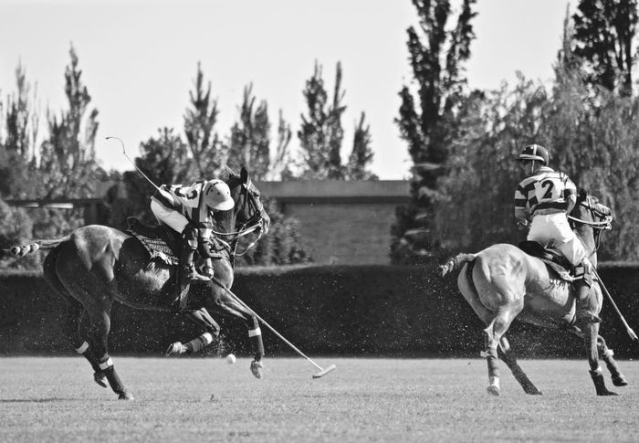 Black And White Casual Clothing Day Focus On Foreground Full Length Leisure Activity Lifestyles Outdoors Polo Sky Sport Warm Clothing Horses Horse Riding Horse Photography  Polo Player Polo Sport Enjoy The New Normal