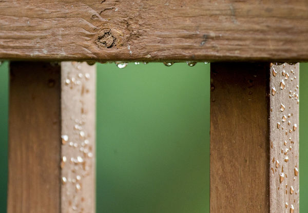 Dew drops Beads Of Water Rain Drops Architecture Brown Built Structure Close-up Decking Wood Dew Drops Droplets Home Interior Pattern Selective Focus Textured  Wood Wood - Material