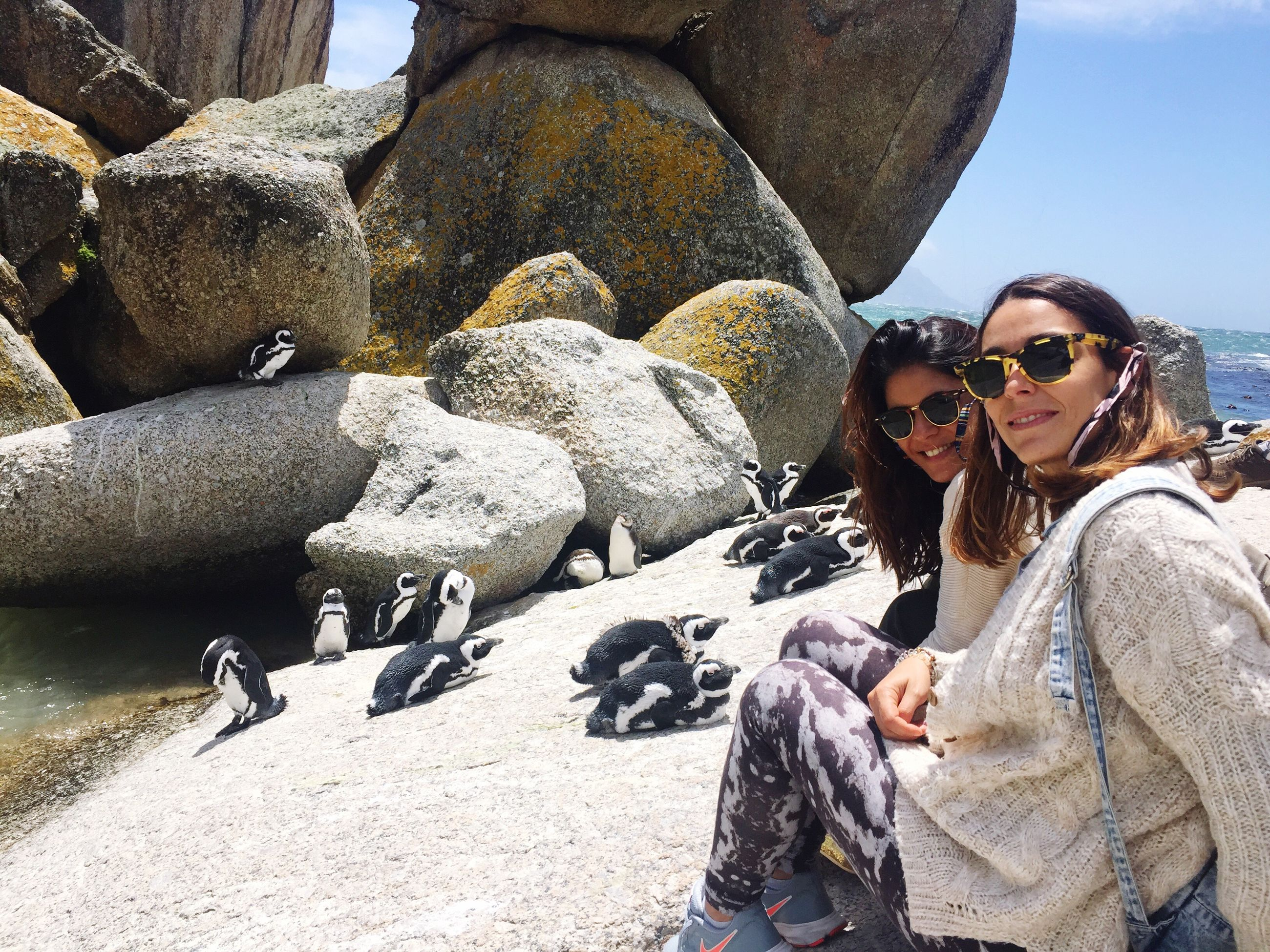 togetherness, young adult, friendship, two people, elephant, portrait, young women, happiness, sunglasses, bonding, beach, vacations, adults only, people, outdoors, adult, women, sand, smiling, day, sky, only women, mammal