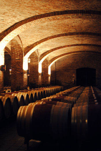 Arch Architectural Feature Barrels In Line Barrels Indoors Interior Wine Ageing Wine Cellar Winery