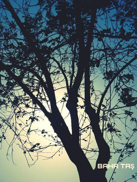 Flowers Silueta Vespertina #esquidemontaña #skimountaineering #skimo #training #gasss #sunset #atardecer #afterwork #mountain #ilovemountain #dynafit #spring #primavera Cotos Peñalara [Silueta Vespertina #esquidemontaña #skimountaineering #skimo #training #gasss #sunset #atardecer #afterwork #mountain #ilovemountain #dynafit #spring #primavera Cotos Peñalara [ Eyemphotography Eyeembestshots Eyeembestedits Eyeem Flower#garden#nature#ecuador#santodomingoecuador#eyeEmfollowers#iphoneonly#nofiltrer#macro_garden#pretty#beautiful#followme#sho Sunny Day Antalya Turkey Sunset #sun #clouds #skylovers #sky #nature #beautifulinnature #naturalbeauty #photography #landscape Eyeemphotography Samsungphotography Eyemphotography Taken By Me