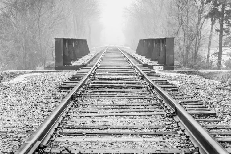 Railroad tracks over bridge amidst bare trees at forest during foggy weather
