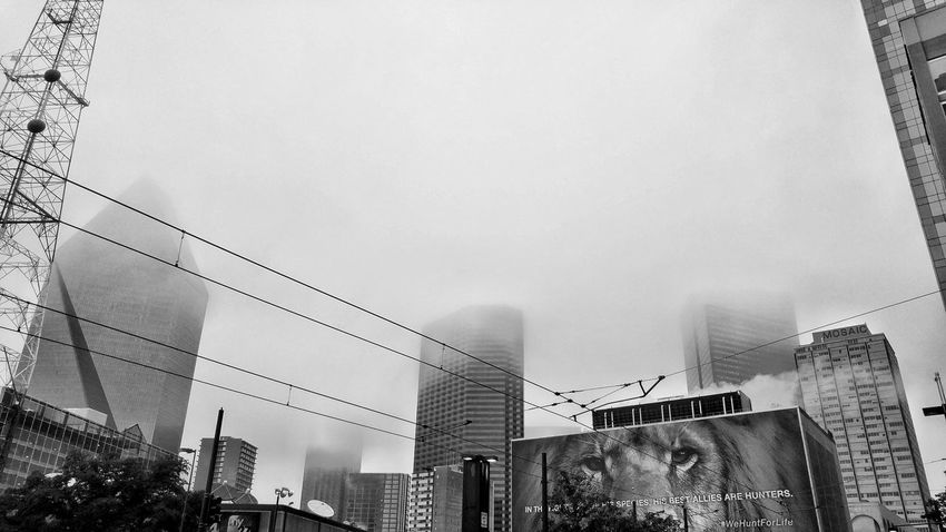Monochrome Downtown Morningcomute Morning Foggy Fog Black And White Architecture Building Exterior Built Structure Outdoors Low Angle View No People Day City Sky