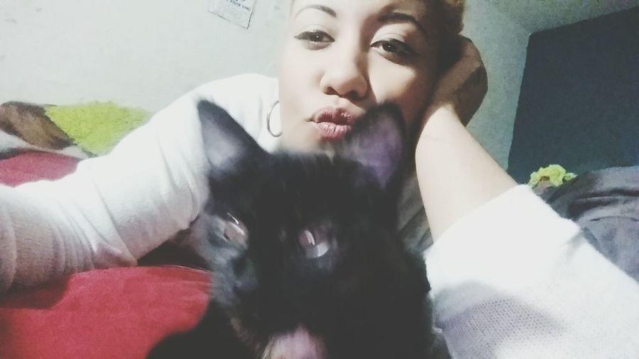 Kitty Catlady