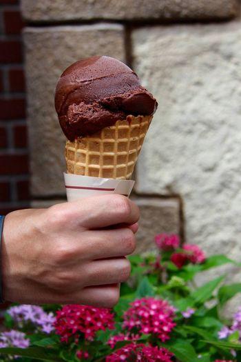 Disney Orlando Chocolate Dark Chocolate ♥ Icecream