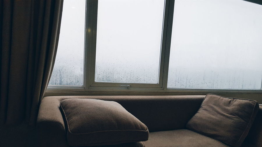 Relaxing Sleeping Napping Relax Nap Pillow Rainy Raining Cool Weather Enjoying Life Cozy Rest Backlight Light Shadow Window View Window Sofa Cold