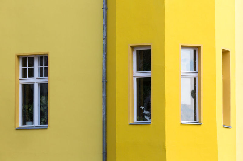 Architectural Detail Architecture Bright Bright Yellow Building Building Exterior Built Structure City Closed Color Palette Colour Of Life Façade Full Frame Rain Drainage Pipe Rain Water Downpipe Residential Building Residential Structure Side By Side Window Windows Yellow Shades Of Yellow Minimalist Architecture Paint The Town Yellow
