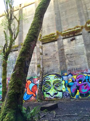 Telling Stories Differently Landscape Abstract Photography Abandoned & Derelict Graffiti Old Abandoned Mill Abandoned Places Showing Imperfection Abandoned Rustic Abstract Nature Abandoned Buildings Views Exploring Neat Places Landscape #Nature #photography Nature Tree Streetart/graffiti Art Landscapes Scenic