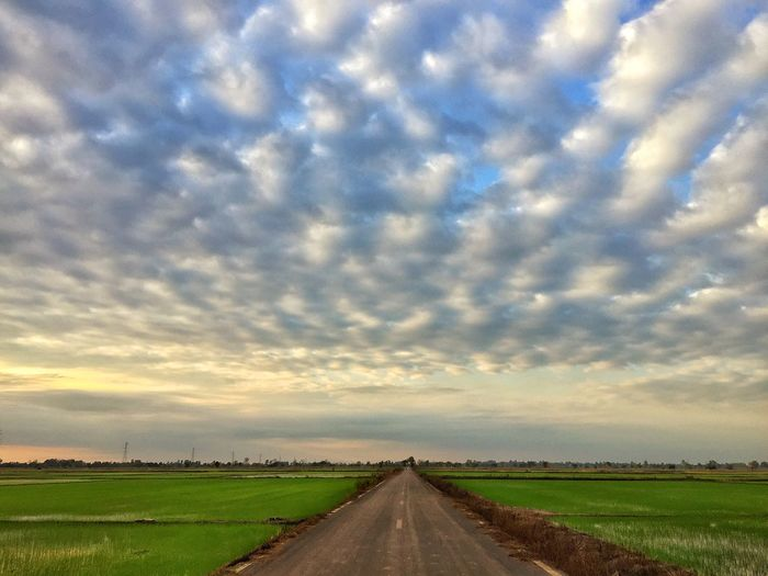 Farmer in the street Sky Cloud - Sky The Way Forward Direction Field Environment Beauty In Nature Rural Scene Nature Agriculture Road No People Diminishing Perspective Tranquility Scenics - Nature Plant Landscape Tranquil Scene Land vanishing point